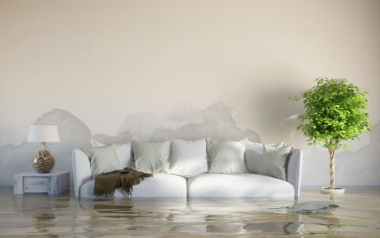 Wasserschaden im einem Haus nach Überschwemmung mit Wasserflecken an der Wand